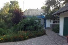 malva-gorishnia-1